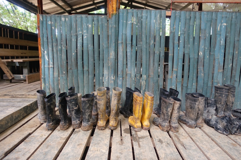 Muddy boots lined up after a jungle trek in Borneo, Malaysia.
