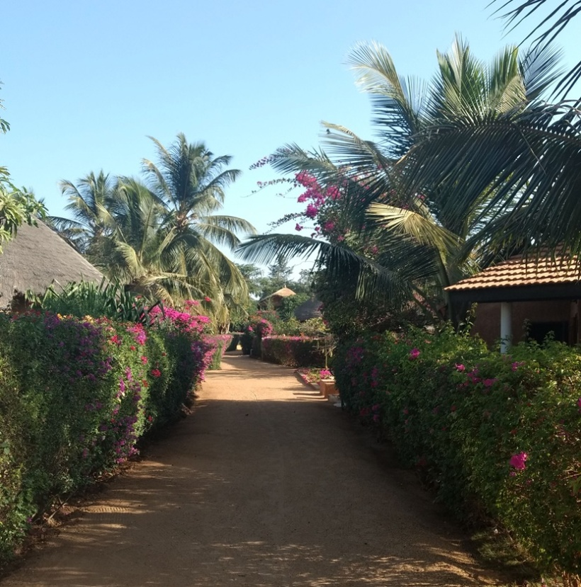 The pathway with huts.